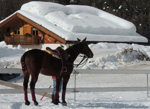 Cortina_Winter_Polo_Fiames