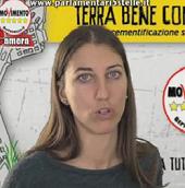 Silvia Benedetti